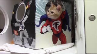 NAHS Kittens Pick the Winner of Sunday's Game!