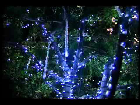 snowfall led christmas light tubes youtube - Snowfall Christmas Lights