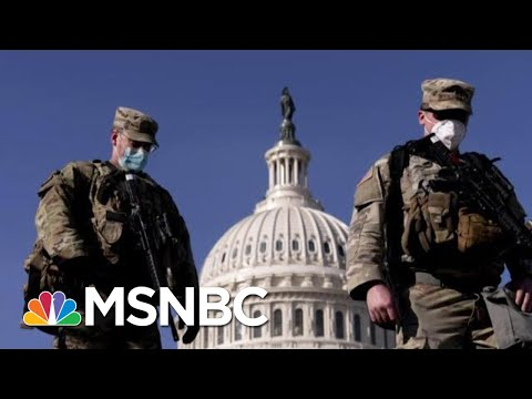 Pete Williams On Potential Second Capitol Attack: 'Nobody's Going To Breach The Capitol' | MTP Daily