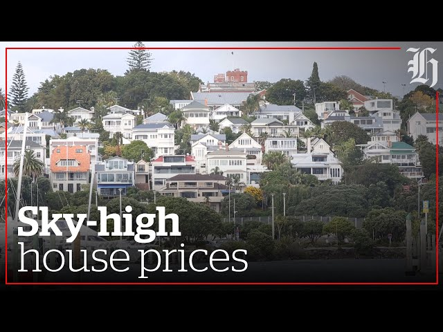 Nearly half all of Auckland homes priced over $1 million   nzherald.co.nz