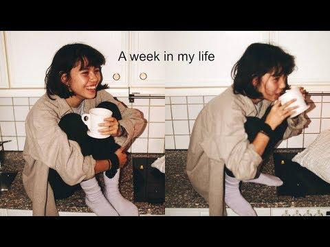 A School Week in my Life // Vlogmas Day 9 thumbnail