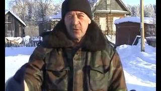 В поселке Черемушский стали пропадать собаки.