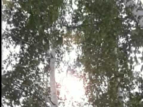 Моя Осень. Авторская песня. Анатолий Гетманец