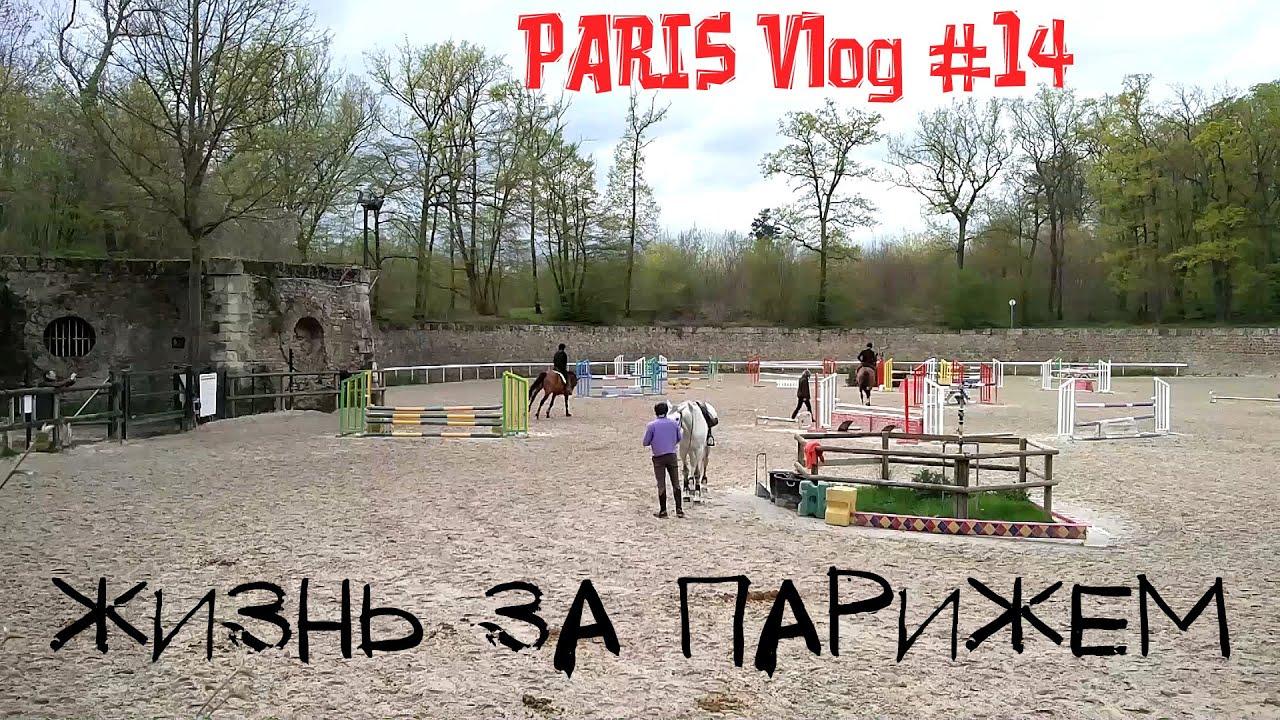 Paris Vlog #14 ★ Жизнь в пригороде Парижа ★ Конный спорт ★ Лес возле Парижа | Бонжур Франция