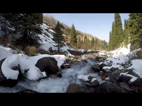WINTER LANDSCAPE WITH LIVE SOUNDS  LIVE SOUND OF RIVER  10 H VIDEO OF RELAX