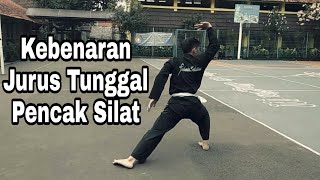 Video Tutorial Kebenaran Jurus Tunggal Baku Pencak Silat #1 download MP3, 3GP, MP4, WEBM, AVI, FLV Oktober 2019