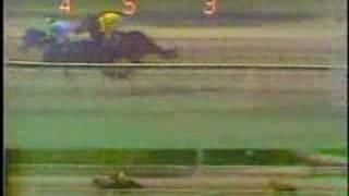 Clasico Jose Antonio Paez 1984