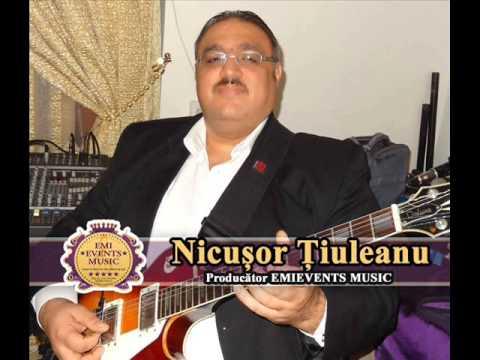Nicusor Tiuleanu - Hora olteneasca(Intrumentala chitara)