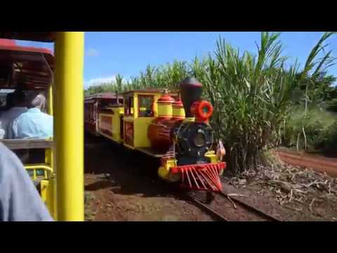 Dole Pineapple Express 112618