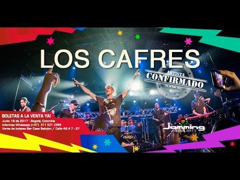 Especiales Jamming Festival 2017 - Los Cafres (Argentina)