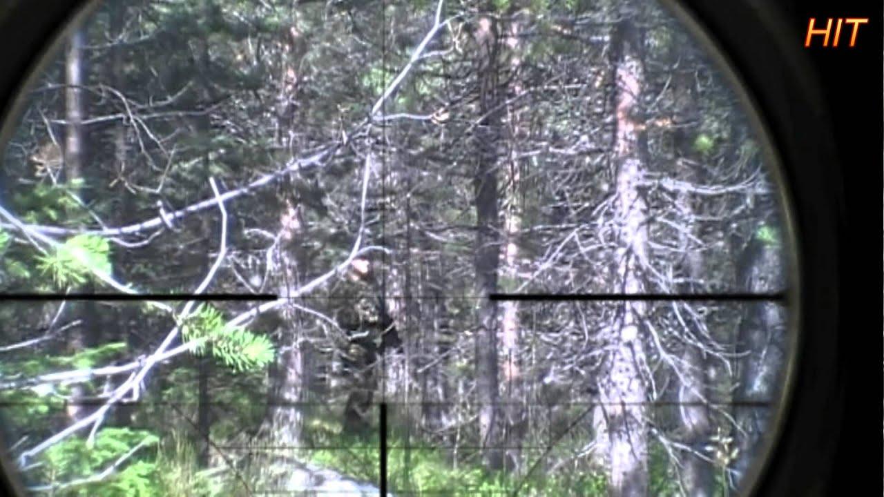Airsoft Sniper SR25 M110 Scope Camera