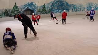 Хоккей - начало