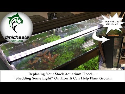 Replacing Your Stock Aquarium Hood...