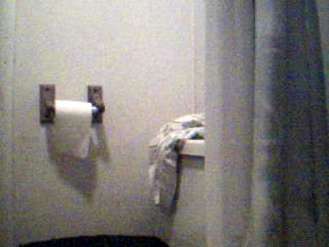 Jack ass clip toilet in plumbing