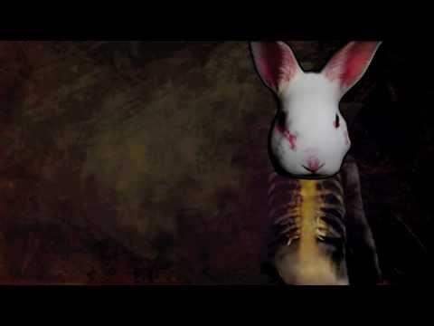 The White Rabbit Is Sick !