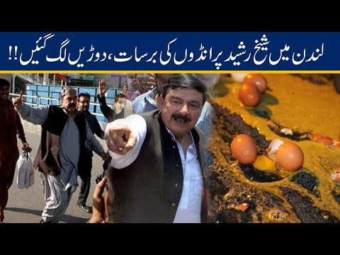 Exclusive Video!! Eggs Thrown At Sheikh Rasheed In London
