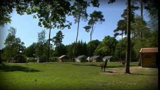 Camping 'de Kleine Wolf'