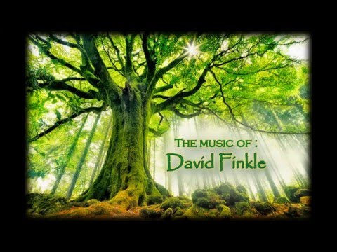 Assorted music of multi-instrumentalist David Finkle HQ (studio quality)