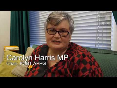 Carolyn Harris MP - Chair FOBT APPG