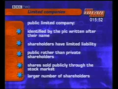 advantages of public limited liability company