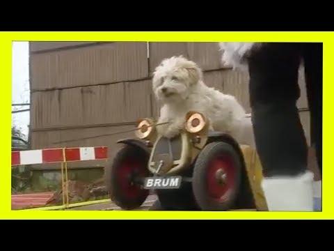 Brum 302 | NAUGHTY DOG | Kids Show Full Episode