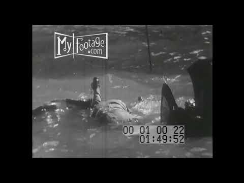 1950 TRAIN CRASH | VICTIMS IN RIVER (Silent) Stock Footage in HD