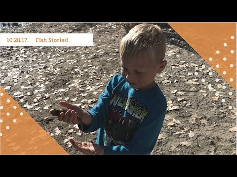 DITL   10.29.17   Fish Stories & Pure Exhaustion!
