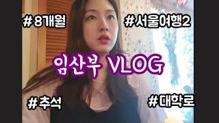 vlog#55 : 임산부 일상, 추석 서울여행2, 르메…