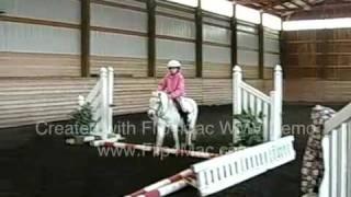 pixie pony &  Lilly iPhone