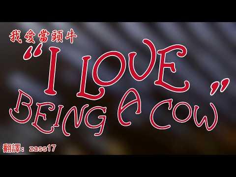 我愛當頭牛 I Love Being A Cow - Axis Of Awesome  超給力軸心