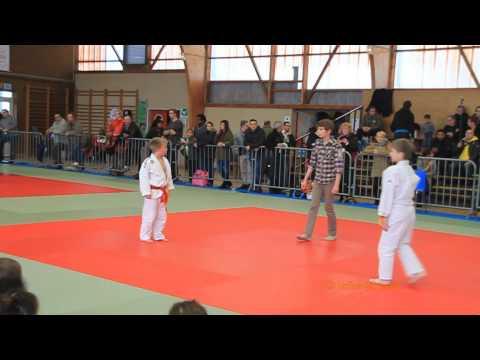 Tournoi de judo de Nogent le Roi le 8 février  2015