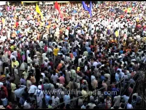 croud of devotees chanting lord jagannath s name youtube
