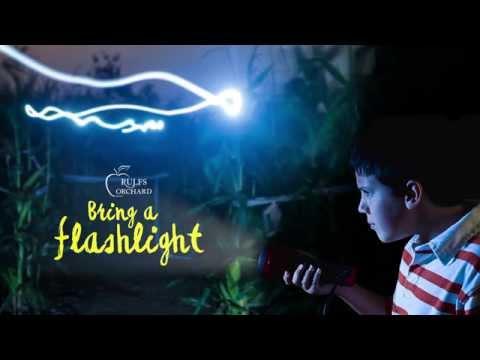 Rulfs Orchard Flashlight Nights: Nighttime Corn Maze 2015