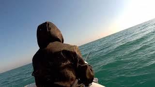 Морская рыбалка Заозерное 10 11 2019г
