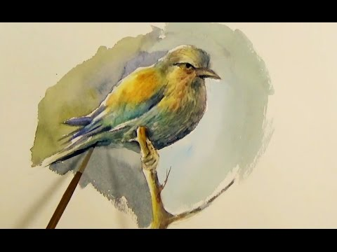 Watercolor Painting a Brid