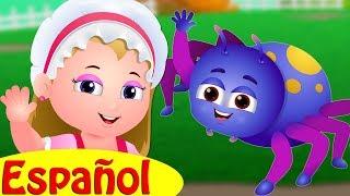 Muffet la Jovencita | Caricatura Animada Canciones Infantiles y Canciones para Niños| ChuChu TV