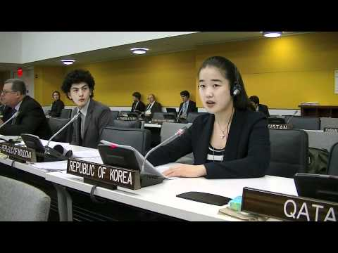 2011 Youth Delegate to the United Nations: Republic of South Korea