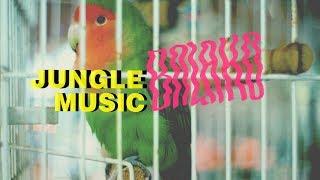 Balako 'Jungle Music' (official video)
