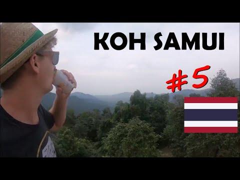 #5 Koh Samui oder... Party, Regen & Scooter-Sightseeing