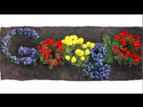 Giorno della Terra, si festeggia Earth Day con i fiori del doodle Google