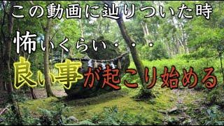 【出雲大神宮遠隔参拝】※京都最強パワースポットの恩恵※怖いくらい願いが叶う※縁結 金運 長寿 Kyoto Shrine パワースポットひとり旅#68