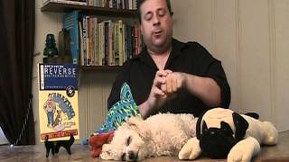 Dog Training - Biggest Dog Training Mistake People Make Without Realizing It