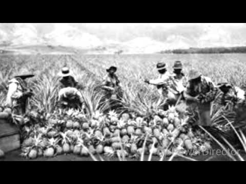 Modern History of Hawaii; Asian immigrants