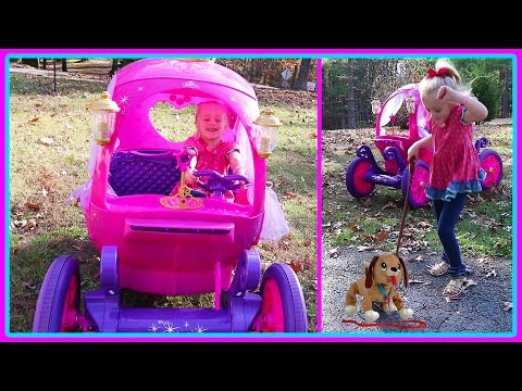 Lost Puppy Rescue Mission in the 24V Disney Princess Carriage Power Wheels & Pirate Ship Playground