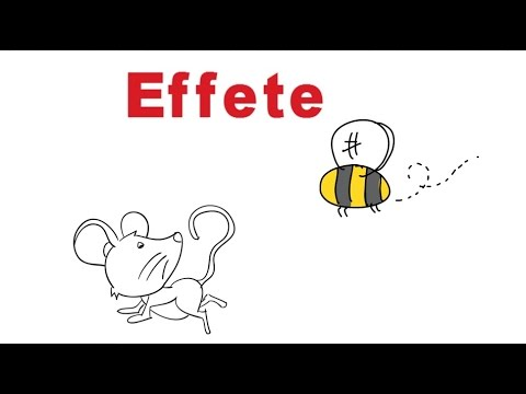 Superior Effete Meaning In English And Hindi With Usage   YouTube