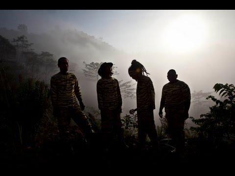 MATAHARIMAU: Navicula Borneo Tour