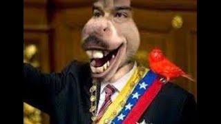 Las Burradas de Maduro