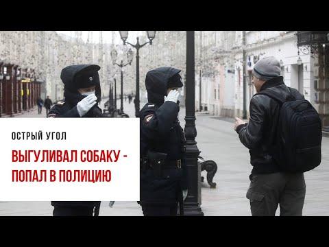Выгуливавшего собаку москвича забрали в полицию без пса