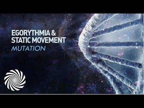 Egorythmia & Static