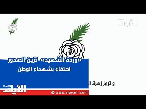 «وردة الشهيد»  تزين الصدور احتفاءً بشهداء الوطن  - نشر قبل 2 ساعة